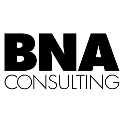 BNS Consulting logo